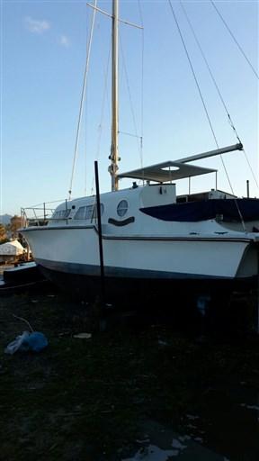 Catalac 30 catamarano (6)