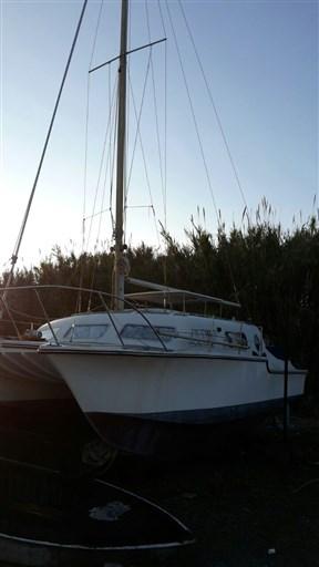 Catalac 30 catamarano (8)